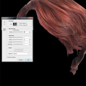 haarkleur veranderen in Photoshop_refine edge